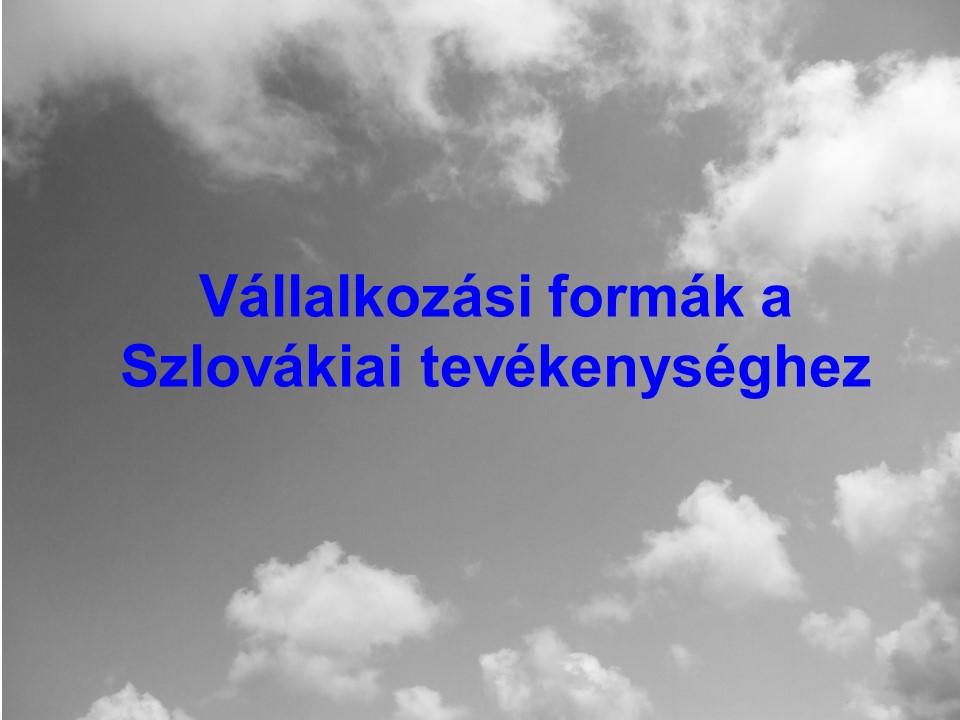 Vállalkozási formák a Szlovákiai tevékenységhez