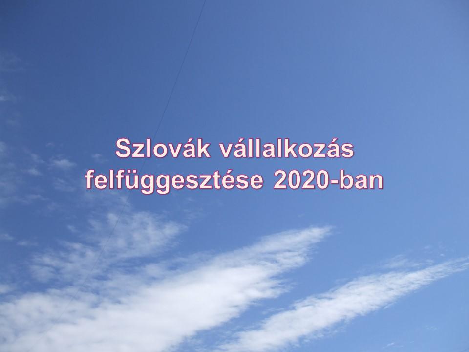 Szlovák vállalkozás felfüggesztése 2020-ban