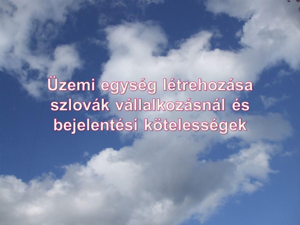 Üzemi egység létrehozása szlovák vállalkozásnál