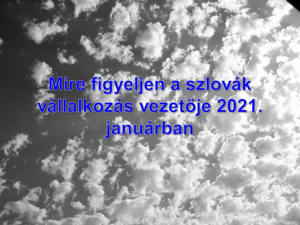Mire figyeljen a szlovák vállalkozás vezetője 2021. januárban