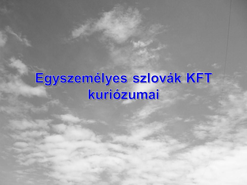 Egyszemélyes szlovák KFT kuriózumai